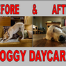 Before & After Day Care